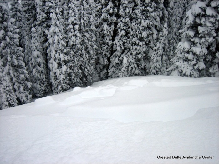 Natural soft slab on 1/29 interface. East aspect below treeline. Either failed on facets or surface hoar.  SS-N-R2-D1.5-I