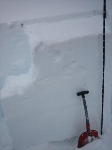 Snow profile. NW aspect NTL near Friends Hut