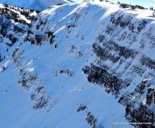 Old crown. NE aspect, Scarp Ridge