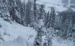 11/24/14 Snodgrass Avalanche